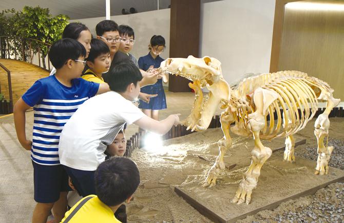 하마 뼈 표본. - 현수랑 기자 hsr@donga.com 제공