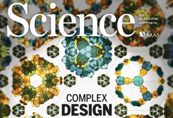 새 '단백질 구조' 설계… 신개념 약물전달물질 나온다
