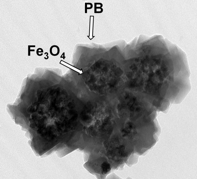 세슘 제거가 가능한 흡착제의 단면. 자성 나노입자 응집체 표면에 육면체 구조의 프러시안 블루(PB)가 코팅된 모습을 볼 수 있다. - 한국원자력연구원 제공