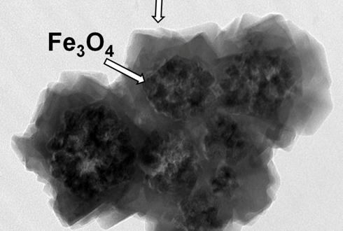 나노자석으로 방사능 오염물질 제거한다