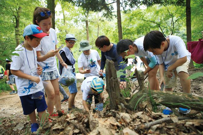 캠프 참가자들은 풀숲을 헤치며 곤충의 다양한 흔적을 찾아냈다. - 김은영 기자, 김정 기자 제공