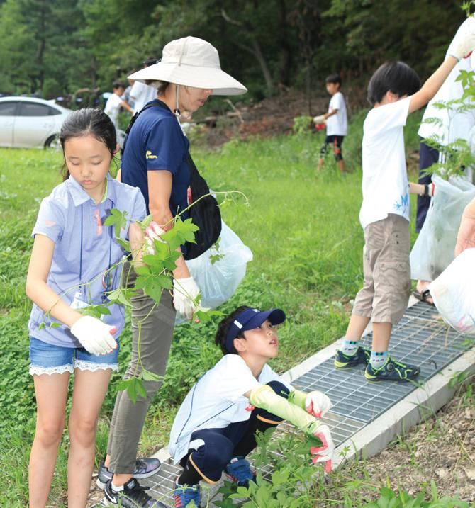 북한산국립공원에서 우리 고유종을 위협하는 외래식물을 제거했다. - 이서연 작가(AZA Studio) 제공