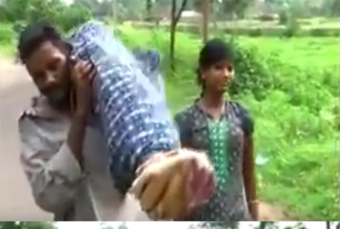 인도 가난한 남편, 아내 시신 둘러메고 12km 걸어