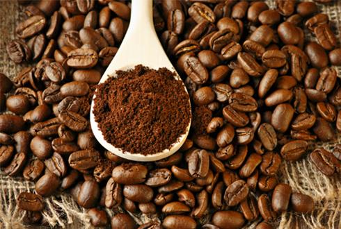 커피찌꺼기의 무한 활약, '찌꺼기'라고 무시하지마세요!