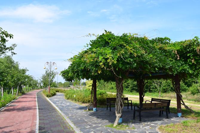 사람들의 휴식공간이 되어주는 향호. 공원과 산책로가 만들어져 있다. - 고종환 제공