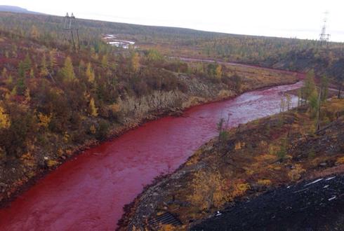 핏빛으로 변한 러시아의 강