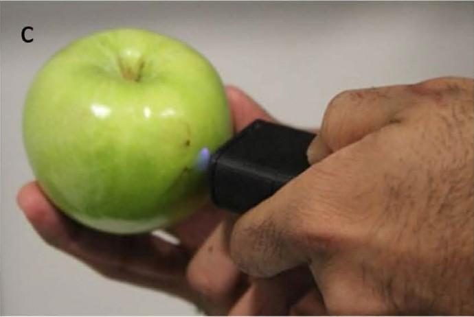 미국 매사츄세츠공대(MIT) 연구진은 손에 쥘 수 있는 크기의 소형 장비로 사과의 익은 정도를 3단계로 구분 할 수 있는 기술을 개발했다. - MIT 제공