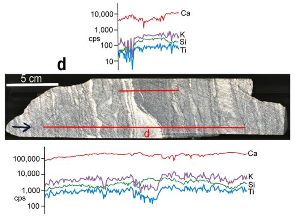 37억 년 전 스트로마톨라이트에는 미생물의 존재를 보여주는 미화석이 존재하지 않기 때문에 100% 진짜라고 입증할 수 없다. 다만 형태와 함께 원소조성이 이를 뒷받침하고 있다. 데이터를 보면 스트로마톨라이트로 추정되는 부분에서 티타늄(Ti, 파란색)과 칼륨(K, 보라색)의 그래프가 떨어짐을 알 수 있다. 농도를 나타내는 세로축은 로그척도다. - 네이처 제공
