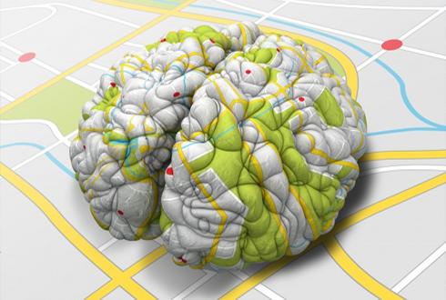 국내 뇌과학 전문가 한 자리에… '10년 계획' 짠다