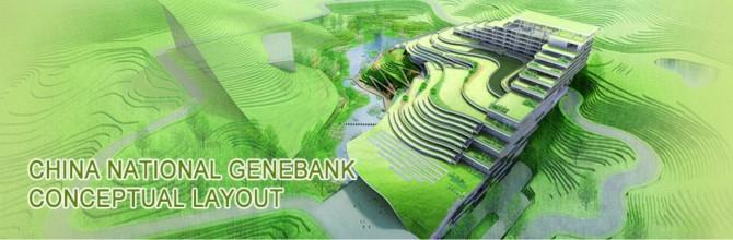 중국 국가유전자은행의 모식도 - 중국 국가유전자은행홈페이지(www.cngb.org)  캡쳐 제공