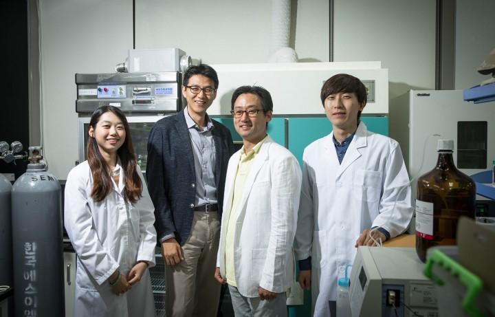 안전성과 효율이 뛰어난 유기 태양전지를 개발한 울산과학기술원 연구팀 - UNIST 제공