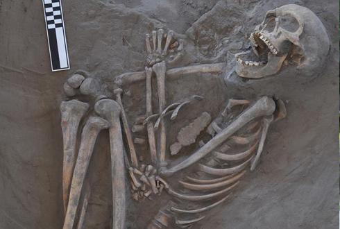 800년전 부메랑에 희생된 전사
