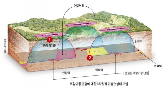 단층의 오른쪽과 왼쪽이 엇갈리는 주향이동 단층은 보통 여러 개로 분절돼 있다. 처음에는 단층의 경계면(반원 모양)에서 지진이 시작되지만(①), 시간이 지나면 응력이 단층 간의 연결부위로 전달되면서 연결부위에서 여진이 발생한다(②). - 일러스트 박장규 제공