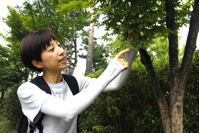 김선희 국립산림과학원 박사가 단풍나무를 가리키며 설명하고 있다. 이 나무도 10월 초가 되면 슬슬 붉은 빛을 띨 것이다. - 최지원 제공