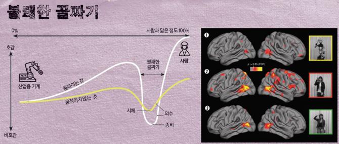 '불쾌한 골짜기'가 실제로 존재할까? 미국 UC샌디에이고 연구팀의 연구 결과, 사람들이 일반 로봇을 볼 때에는(①) 뇌가 활성화하는 부분이 사람을 볼 때와 같았다(③). 하지만 휴머노이드를 볼 때(②)는 시각을 느끼는 부분과 감정을 느끼는 부분이 극적으로 활성화됐다. 휴머노이드가 거부감을 준다는 뜻이다. - Oxford Journals 제공