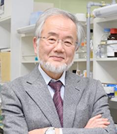 일본 도쿄대 오스미 요시노리는 교수 - 노벨상위원회 제공