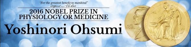 10월 3일 저녁, 노벨상 위원회는 도쿄 공업대학 요시노리 오스미 교수를 올해 생리의학상 수상자로 발표했다. - 노벨상 위원회 제공