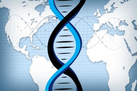 가장 정밀한 인간 유전체 지도. 한국 연구진이 분석