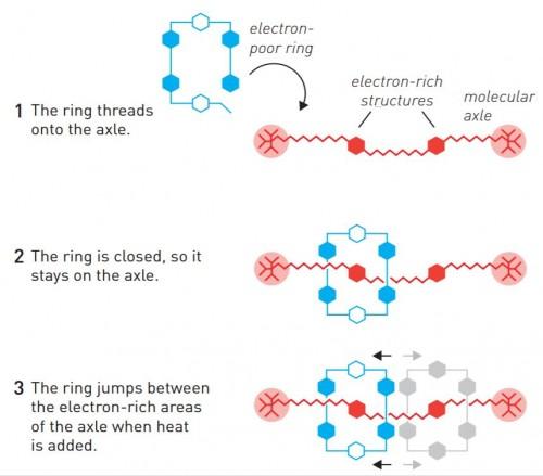 프레이서 스토다트는 고리형 분자가 막대형 분자에 꿰어진 채 양끝을 왕복해 움직이는 분자 기계를 만들었다. 이 움직임은 열에너지를 통해 미세하게 조정이 가능하다. - 노벨상위원회 제공