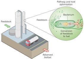 21세기 들어 석유고갈과 환경문제로 친환경 바이오연료에 대한 관심과 수요가 높아지고 있다. 연구자들은 대사공학기술을 써서 미생물이 먹이(feedstock)를 연료로 바꾸는 효율을 높이는 연구를 진행하고 있다. - 네이처 제공