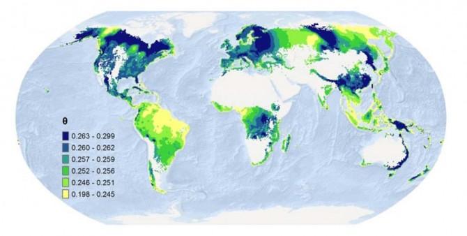 량 교수팀은 이번 연구를 통해 숲의 생물다양성과 산림생산성의 관계를 밝혀 지도로 만들었다. 노란색에서 파란색으로 갈수록 생물다양성이 산림생산성에 영향을 크게 미치는 지역이다. - 사이언스 제공