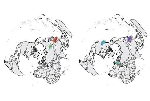 2014년 한국 조류인플루엔자 세계 확산 주범은 '야생 철새'