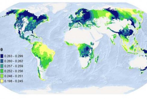 나무 종 수 10% 줄어들면 숲의 혜택도  '2~3%' 준다
