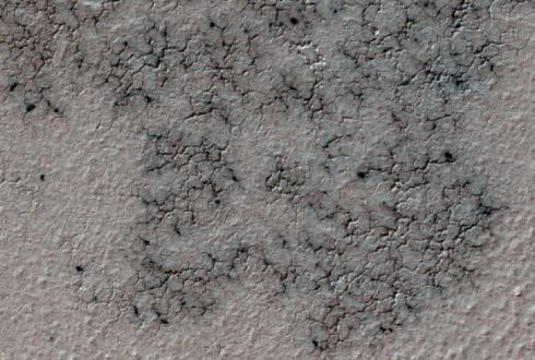 시민 1만 명, 집단지성의 힘… 화성서 새 탐사 지점 찾았다
