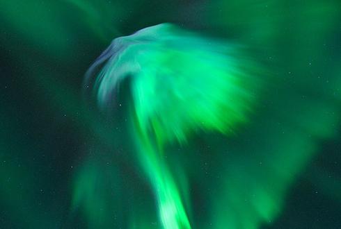 노르웨이의 독수리 오로라 포착