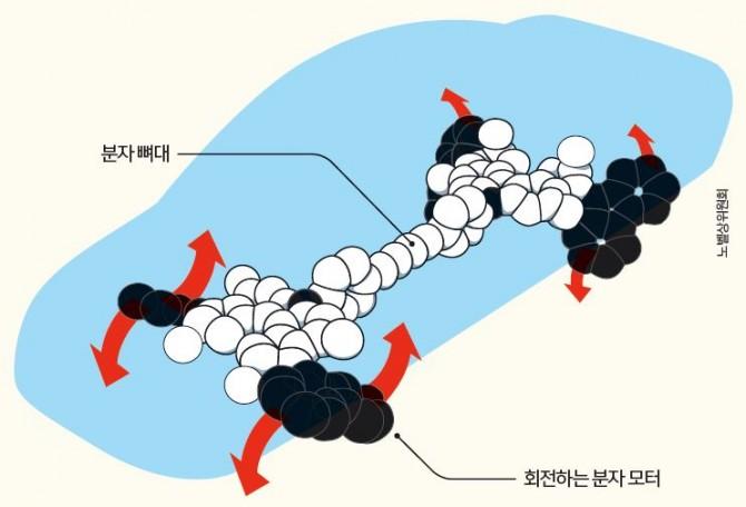 베르나르트 페링하 교수는 빛과 열에 의해 한 방향으로 회전하는 분자 모터 4개를 이용해 나노 자동차를 만들었다. - 노벨상위원회 제공