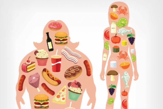 저탄수화물∙고지방 다이어트, 체중감량 효과 기대 어렵다?