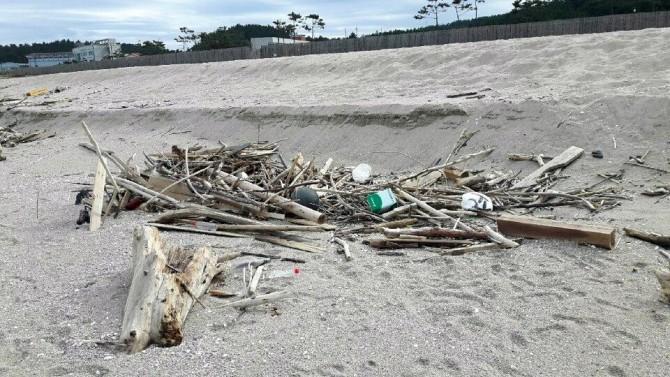 경북 울진에 위치한 한국해양과학기술원(KIOST) 동해연구소 해변에서 발견된 해양쓰레기 더미. 9월 17일 강원 강릉 인근 해변에서는 중국에서 판매하는 음료수의 페트병이 발견되기도 했다. 이들 쓰레기는 올해 8월 28일경 두만강 일대에서 유출돼 남하한 것으로 확인됐다. - 한국해양과학기술원 제공