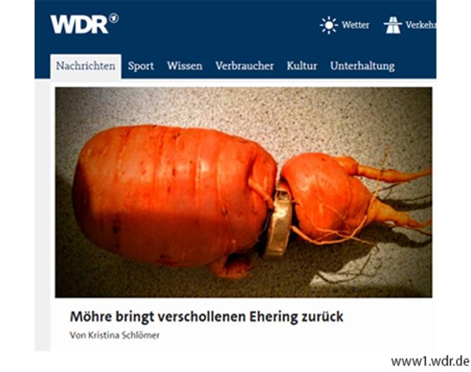 독일 언론에 보도된 '반지 낀 당근' - 팝뉴스 제공