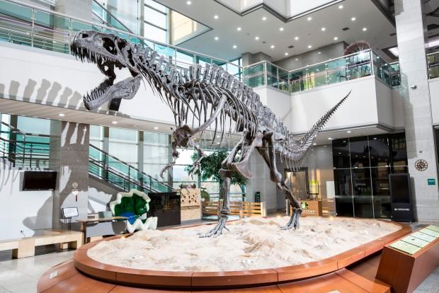 서울 서대문자연사박물관에 전시된 공룡 골격 - 서대문자연사박물관 제공