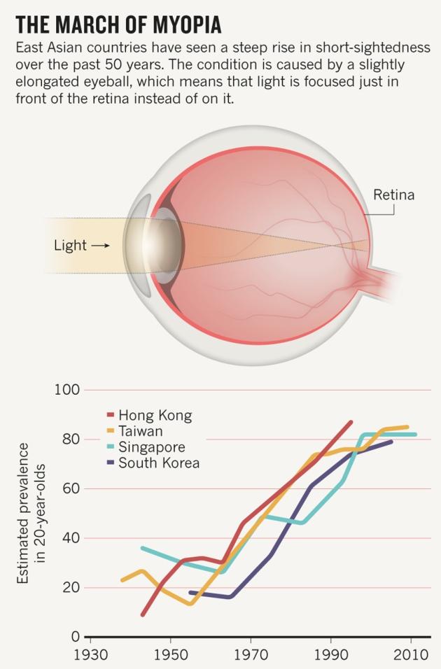 근시는 대부분 10대 시절 안구가 앞뒤로 약간 길쭉하게 변형돼 초점거리보다 뒤에 망막이 놓이면서 나타난다(위). 이때 지나친 실내생활로 빛을 충분히 받지 못하는 게 주원인으로 여겨진다. 특히 동아시아에서 근시가 만연해있다. 아래는 연도별로 20세에 근시일 비율을 나타내는 그래프로 우리나라도 급격히 증가해 최근 80%에 육박한다. - 네이처 제공