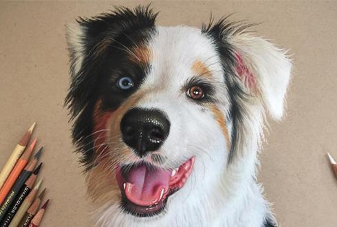 미소 띤 강아지, 그림일까 사진일까