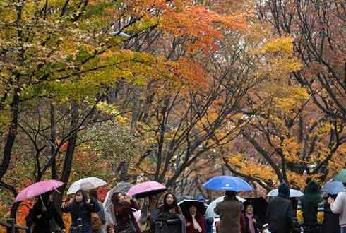 [30일 날씨] 11월의 마지막 비 소식…미세먼지 모처럼 '보통'