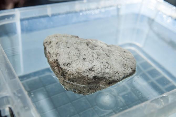 마그마가 폭발하는 순간 만들어진 부석. 공기 함량이 60~70%로 높아 물에 넣으면 스티로폼처럼 떠오른다. - 아자스튜디오 제공