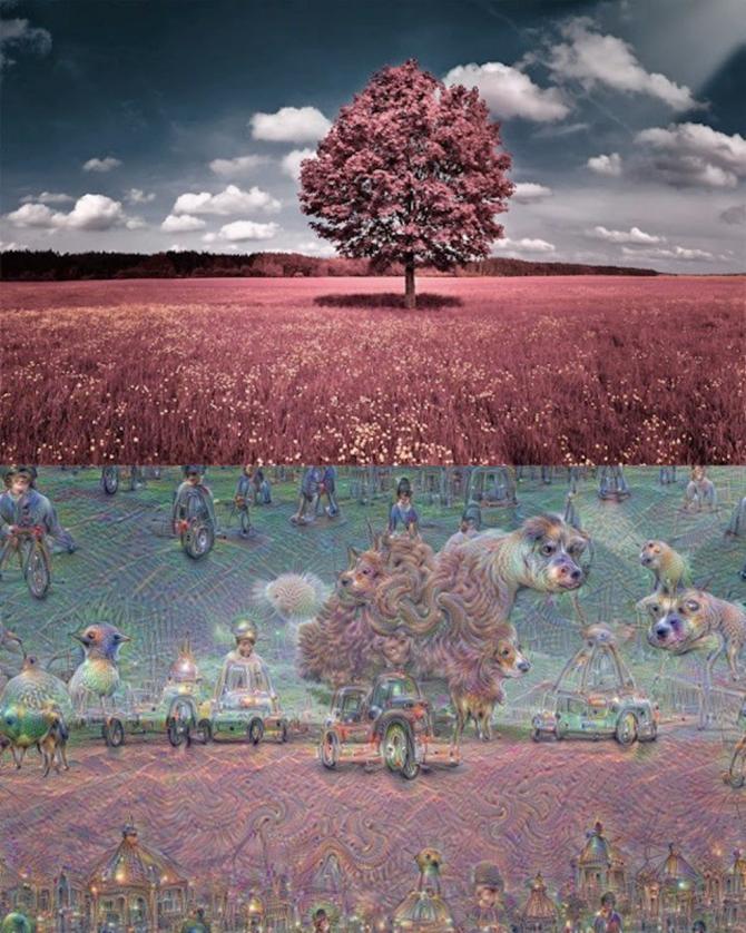 컴퓨터에 입력한 사진(위)과 여러 이미지를 조합해 딥 드림이 만든 이미지(아래). - 구글 제공