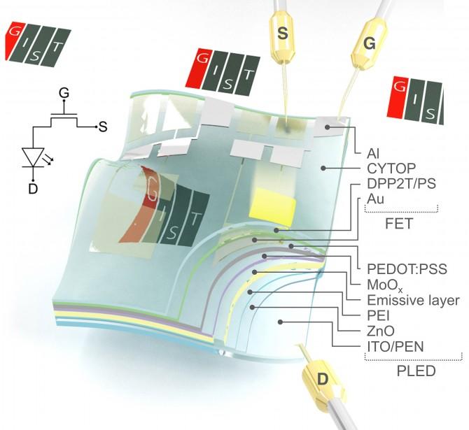 GIST가 개발한 투명하고 휘어지는 반도체 - GIST 제공