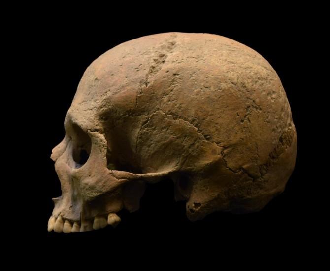 기원후 1~3세기 로마제국 시대의 유골. 헨드릭 포이너 캐나다 맥마스터대 고대DNA센터장 연구팀은 2000년 전 인간 유골에서 말라리아의 유전적 증거를 발견했다. - 커런트 바이올로지 제공