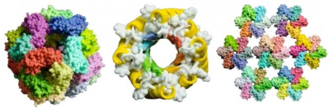 안정적인 3차원 구조의 새로운 인공단백질. 컴퓨터 시뮬레이션 프로그램을 통해 설계한 것으로 자연계에는 존재하지 않았다. - 사이언스 제공