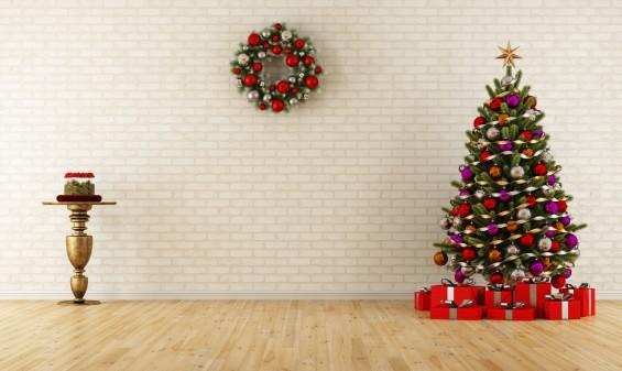 크리스마스 트리로 생물의 진화 과정을 한눈에!