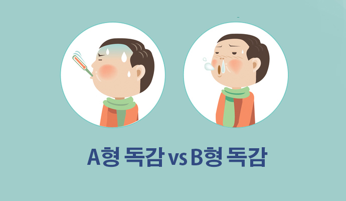A형 독감, B형 독감, C형 독감, 그 차이점은? - (주)동아사이언스(이미지 소스:GIB) 제공
