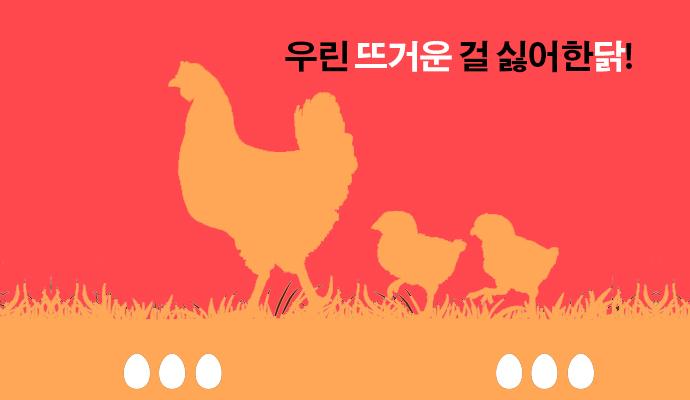 닭은 고열에 약한 동물이다. - (주)동아사이언스(이미지 소스:GIB) 제공