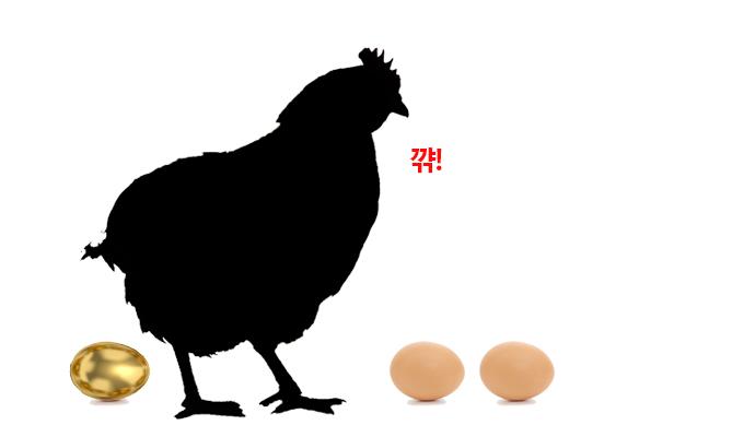 알 낳는 닭, 산란계에게 대체 무슨 일이 생긴 걸까. - (주)동아사이언스(이미지 소스:GIB) 제공