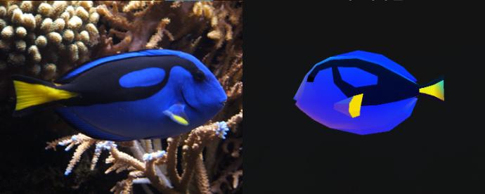 지난 해 '도리를 찾아서'의 주인공이었던 블루탱 - 위키미디어(왼쪽), 어비스리움(오른쪽) 제공