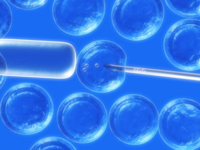 세포치료제에는 면역세포 치료제, 줄기세포 치료제 등이 있다. - GIB 제공