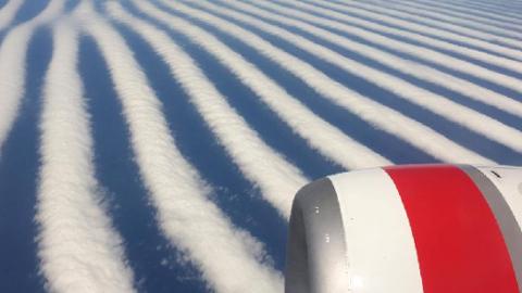 갈래갈래 찢어진 신기한 구름