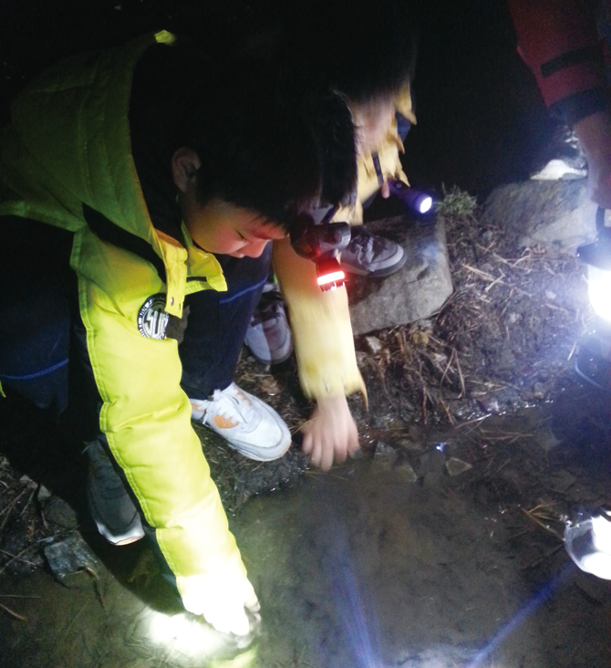 남산에서 야간 탐사를 하고 있는 모습.